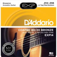 Corzi Chitara Acustica - Coated Light Top/Medium Bottom - D'Addario EXP14